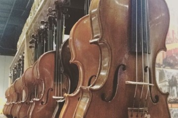 A lineup of instruments at Atlantic Strings.