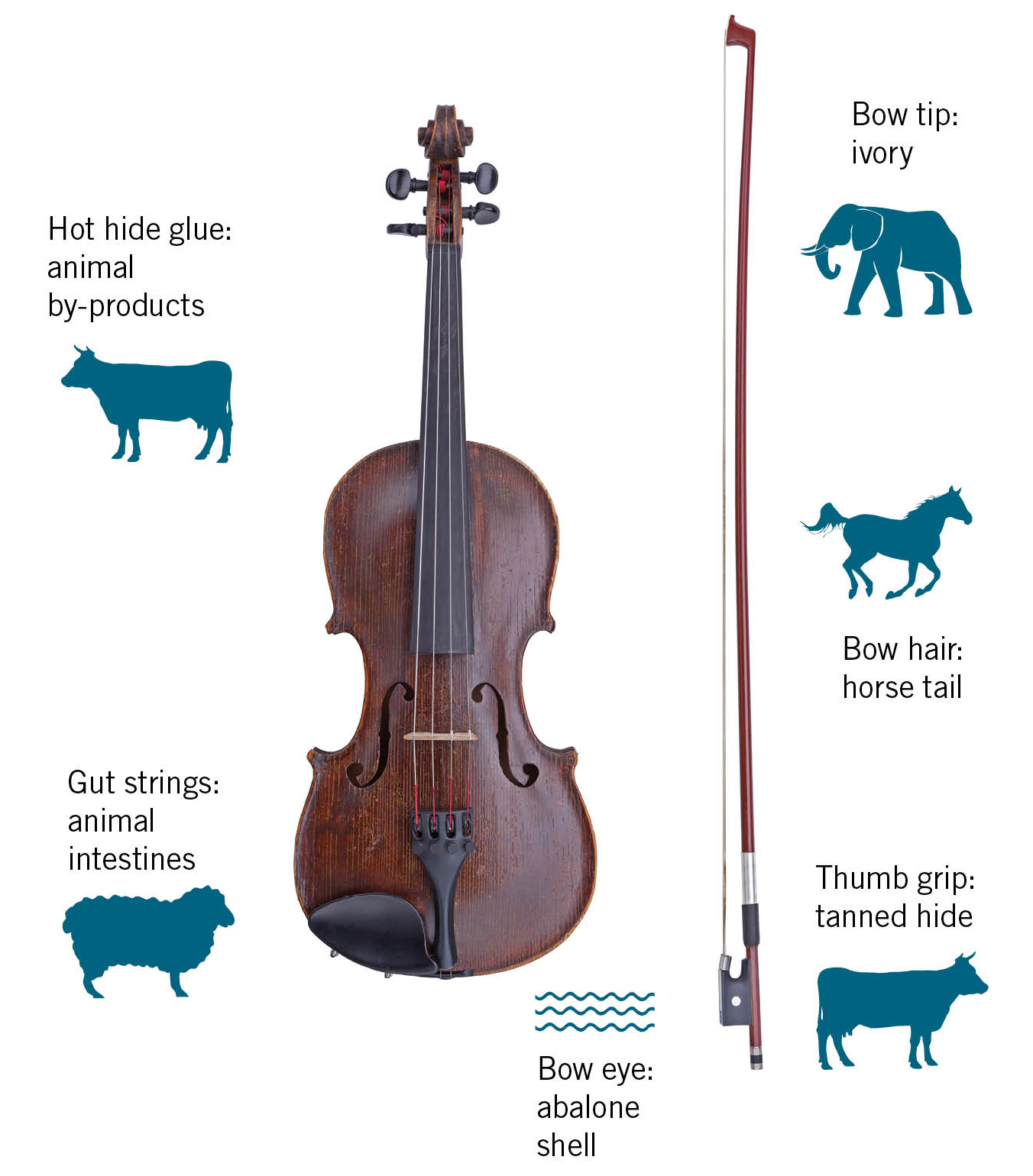 The Search for the Vegan Violin – Strings Magazine
