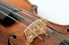 Pilat-Paul-Violin-1