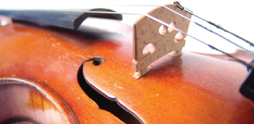 Proper String Height Maximizes Your Instrument's Sound